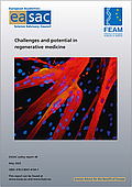 Challenges and potential in regenerative medicine (2020)