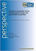 Towards a sustainable future: transformative change and post-COVID-19 priorities (2020)