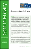 Hydrogen and synthetic fuels (2020)