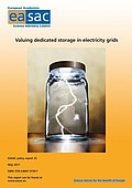 Valuing dedicated storage in electricity grids (2017)