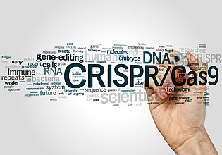 More 'Genome Editing – Challenges for the Future'