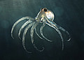 Foto: deep sea octopus © digitalbalance - Fotolia.com