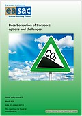 Decarbonisation of transport: options and challenges (2019)
