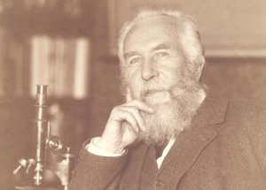Ernst Haeckel (1834-1919): Briefedition